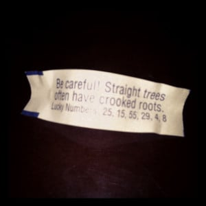 Fortune Cookies Quotes...