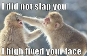 Did Not Slap You…