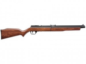 Benjamin 20 Caliber Air Rifle