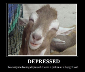 Funny goat sayings.