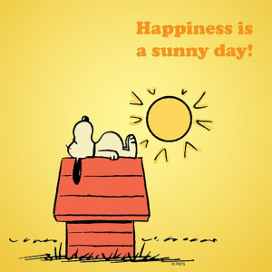 Happiness is a sunny day.