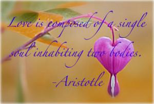 Aristotle Quote Image