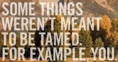Some things weren't meant to be tamed. #quotes