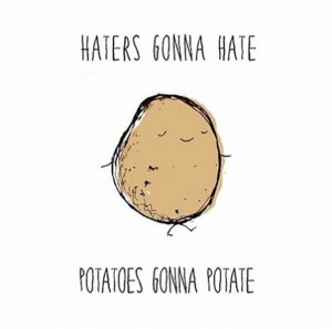 Haters gonna hate memes22 Funny: Haters gonna hate memes