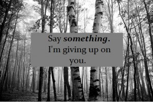 Say Something--Ian Axel