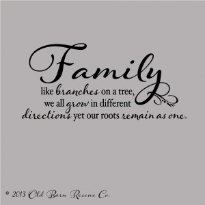 Tree Quotes About Family Family like branches on a tree