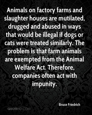 Animals on factory farms and slaughter houses are mutilated, drugged ...