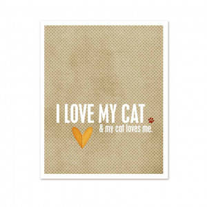 Love My Cat Quotes I Love My