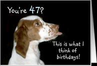 47th Birthday Cards
