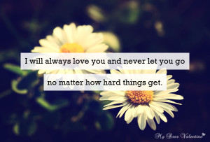 Love You Quotes - I will always love you and never let you go