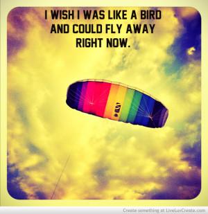 like_a_bird-394766.jpg?i