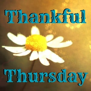 thankful-thursday.jpg