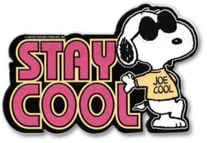where can I find cool snoopy stuff? (description)