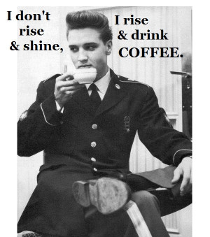 Cool Coffee Quote | I don't rise and shine I rise and drink coffee ...