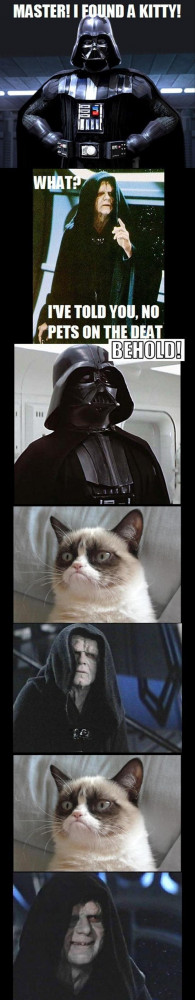 May The Fourth Be With You – 30 Funny Star Wars Pics