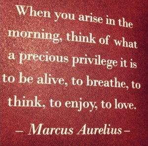 ... -- to breathe, to think, to enjoy, to love. Marcus Aurelius Quote