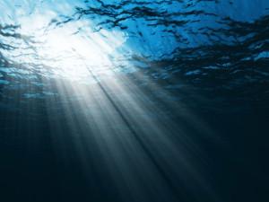 Photo: Sunlight streaming through water