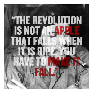 Che Guevara Quote Canvas Art Print