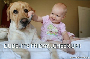 funny-friday-dude-it-is-friday-cheer-up.jpg