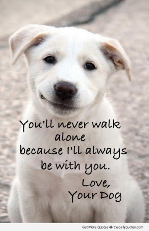 Dog Quotes Sayings Puppy Cute Dogs Love Pictures