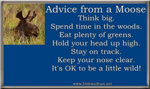 Quotes About Moose
