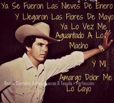 chalino song life quotes banda chalino sánchez mexicans 3 mi musica ...