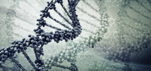 ... Film that Explores the Ethical Implications of Genetic Engineering