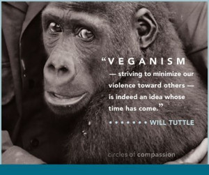 Pro vegan