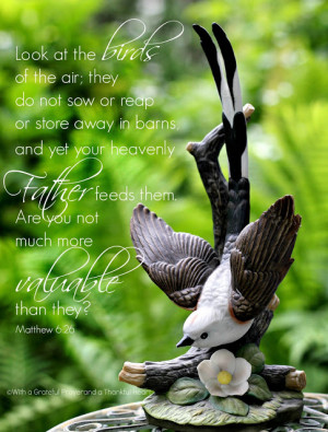 ... bible bible verses birds encouragement faith think on these things