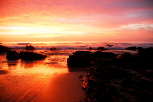 south_african_sunrise_lsf_by_strangledbyart-d2y1ng9.jpg