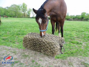 Bale Bag Slow Hay