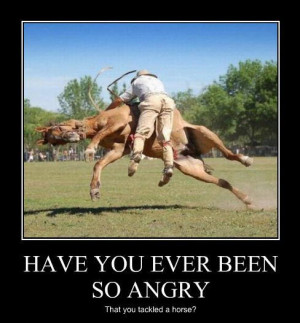 Funny Horse Pictures With Captions (9 Pics)