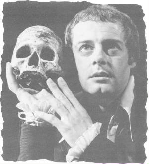 hamlet insane or not essay Looking for free hamlet not insane essays with examples over 65 full length free essays, book reports, and term papers on the topic hamlet not insane click to see.