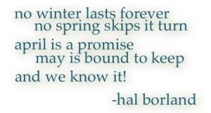 hal_borland_quote