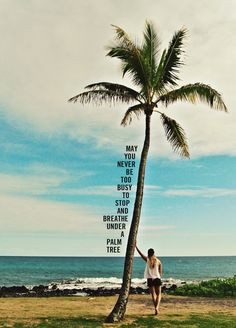 ... May you never be too busy to stop and breathe under a palm tree.