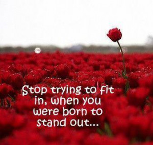 Stop trying to fit in, when you were born to stand out….