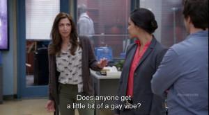 Brooklyn Nine Nine Meme Gay Vibe