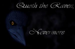 Favorite writing from Edgar Allan Poe?