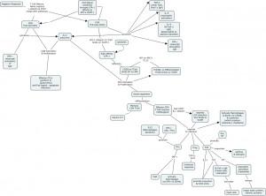Adaptive Immune Response Concept Map