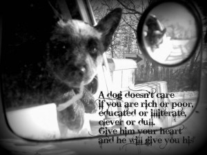 my boy Cash. I love this quote :)