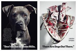 pitbull dog quotes positive