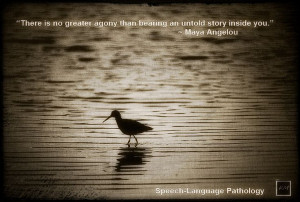 If you are applying to a Speech-Language Pathology graduate school ...