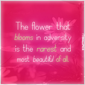 The Flower That Blooms Mulan Inspiring Quote Picture