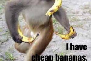 ... funny monkey confused funny monkey funny monkey face let me comb