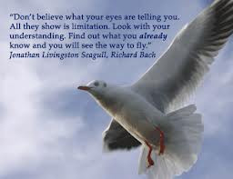 seagull quote