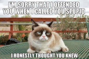 File:Grumpy cat quote.jpg