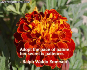 Nature quotes, love nature quotes, mother nature quotes, famous nature ...