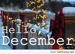 Hello, December I say to you welcome - Funny Pictures, Funny Quotes ...