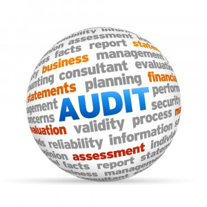 Project & Programme Audits