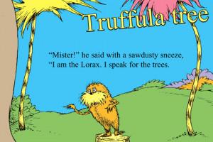 Mzl Pkxzaeqd 480×480 75 Dr Seuss Quotes The Lorax